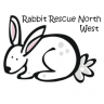 Rabbit Rescue North West